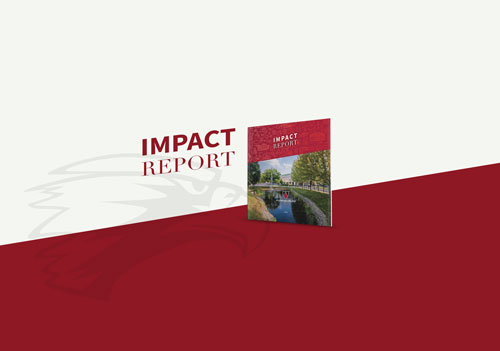 Impact Report Graphic